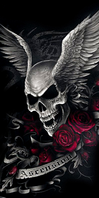 Аватар вконтакте Череп с крыльями среди красно-розовых роз Ascension / Восхождение
