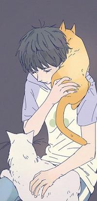 Аватар вконтакте Парень с кошками