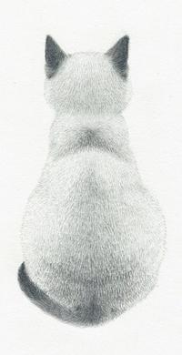 Аватар вконтакте Кошка сидит к нам спиной, by Akiko