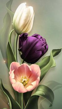 Аватар вконтакте Три разного цвета тюльпана, художница Barnali Bagchi
