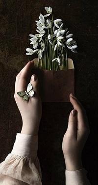 Аватар вконтакте В руках девушки подснежники в конвертике и бабочка на руке