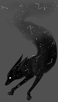 Аватар вконтакте Черный волк с созвездиями на шерсти