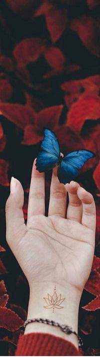 Аватар вконтакте Голубая бабочка сидит на руке