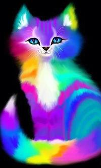Аватар вконтакте Радужный милый кот