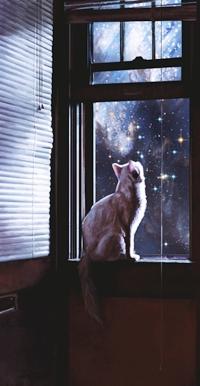 Аватар вконтакте Кошка сидит на окне и смотрит в ночное космическое небо, by Brandon Stricker