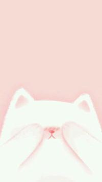 Аватар вконтакте Белый котенок закрывает глаза лапками