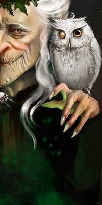 Аватар вконтакте Старик с совой на руке