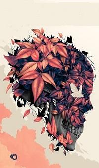 Аватар вконтакте Череп в осенних листьях, by Tomasz Majewski