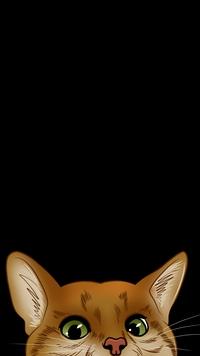 Аватар вконтакте Рыжая кошка выглядывает с черного фона, by Ludmila Pylaeva
