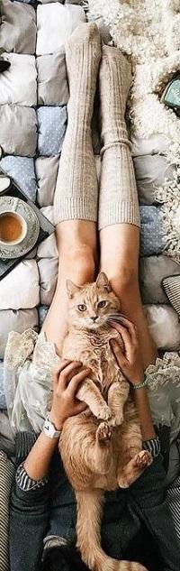 Аватар вконтакте Рыжая кошка лежит на ножках девушки