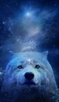 Аватар вконтакте Белый волк под падающим снегом, by silviya