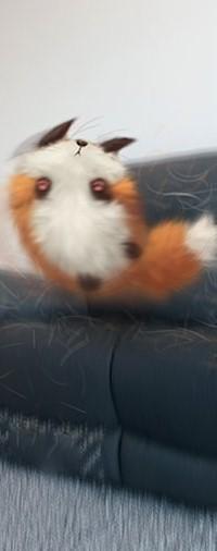 Аватар вконтакте Лиса на диване