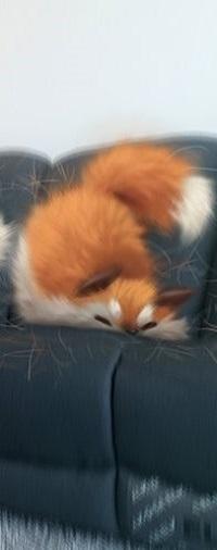 Аватар вконтакте Лиса падает на диван