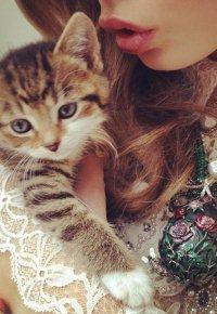 Аватар вконтакте Девушка с аппетитными губками держит котенка