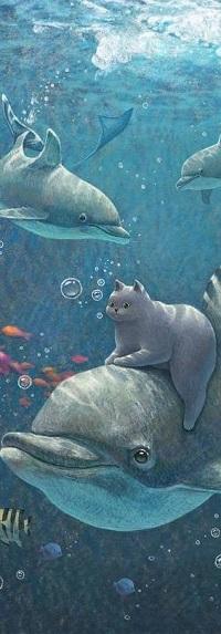 Аватар вконтакте Кошка на дельфине под водой