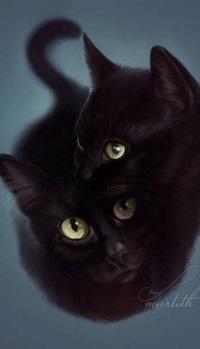 Аватар вконтакте Два черных кота, by Martith