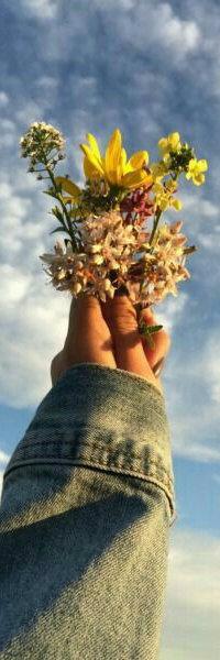 Аватар вконтакте В руке девушки цветы на фоне облачного неба