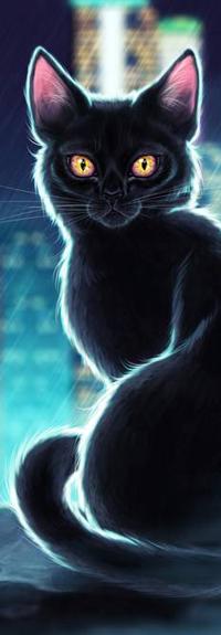 Аватар вконтакте Желтоглазый черный кот под дождем, by Anastasia-berry