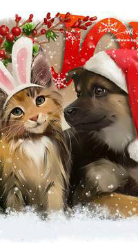 Аватар вконтакте Кошка и пес в новогодних нарядах