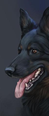 Аватар вконтакте Собака с открытой пасть, by Naia-Art