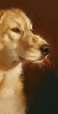 Аватар вконтакте Собака породы золотистый ретривер в профиль, by LazyLapwing