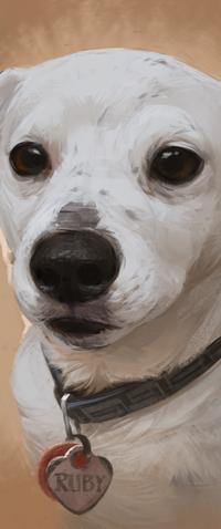 Аватар вконтакте Собака по кличке (Rube), by LazyLapwing
