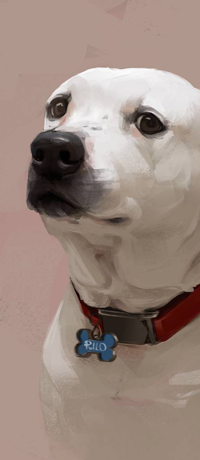 Аватар вконтакте Белый пес на розовом фоне, by LazyLapwing