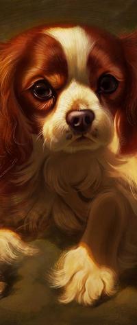 Аватар вконтакте Собака породы кавалер кинг чарльз спаниель, by Pixxus