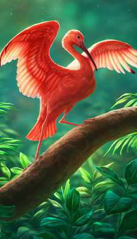 Аватар вконтакте Алый ибис на дереве, by Lhuin