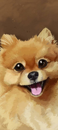 Аватар вконтакте Собака породы померанский шпиц, by Aussienka