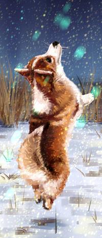 Аватар вконтакте Собака породы корги на фоне снега, by 1NFIN1TY