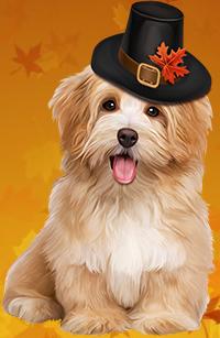 99px.ru аватар Лохматый пес в шляпе, украшенной кленовым листом