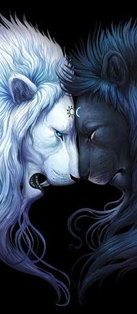 99px.ru аватар Два льва в профиль в виде Янь и Инь, by JoJoesArt
