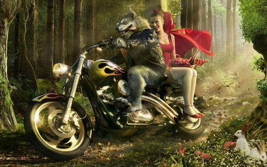 Обои Серый Волк катает на мотоцикле Красную Шапочку (Он в облике рокера, она соблазнительна и красива  и уже постарше 16 лет, в руках у неё корзиночка для пикника и там не только пирожки. Чем окончится прогулка по сказочному лесу?)