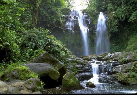 Обои Тропический водопад