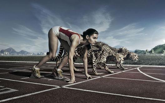 Обои Девушка соревнуется в беге с гепардами