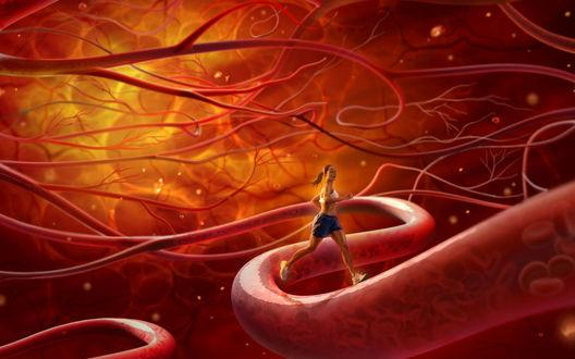Обои Биение жизни-2 (женщина бежит по кровеносным сосудам с артериальной кровью)