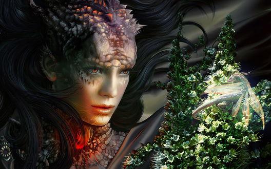 Обои Новорождённый дракон (волшебница создаёт себе нового слугу)