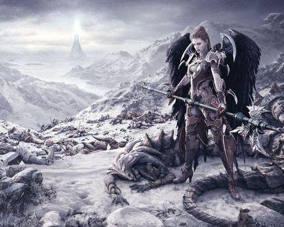 Обои Ангел воин с черными крыльями убила демона на поле боя зимой