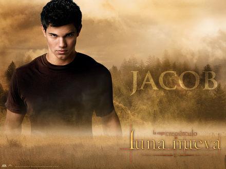 Обои Сумерки. Сага. Новолуние (The Twilight Saga: New Moon) Jacob luna nueva