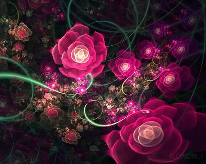 Обои FLOWERINGS Множество разнообразных роз
