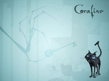 Обои Coraline мультфильм, черный котик