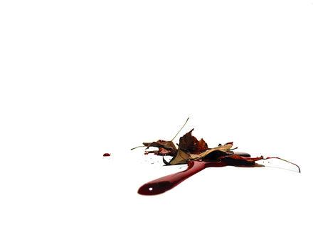 Обои Осенние сухие листья в крови