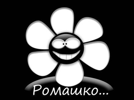 Обои Ромашко, улыбающийся цветок