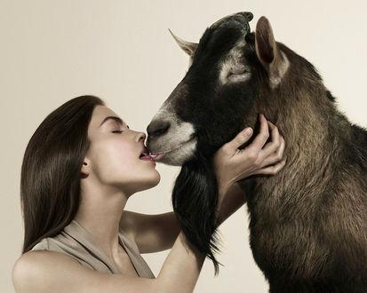 Обои Любовь зла.. (Девушка целуется с козлом с языком)
