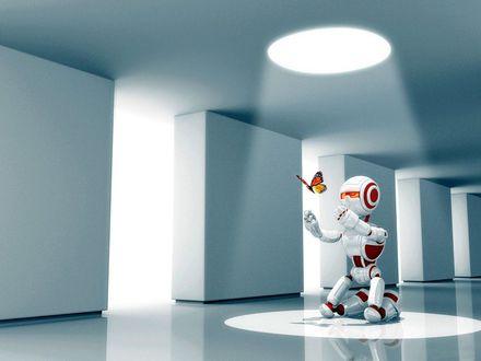 Обои Робот ловит бабочку