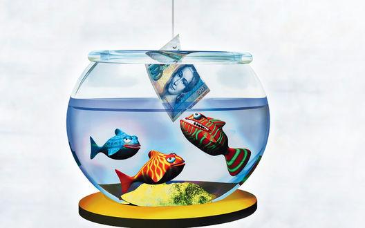 Обои Рыбок, похожих на пираний, ловят на самую лучшую насадку, на деньги