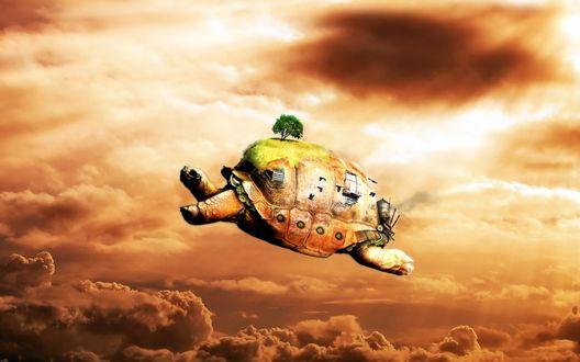 Обои Черепаха (Огромная черепаха, на которой видна зелёная лужайка с деревьями, окна и иллюминаторы, летит по небу.