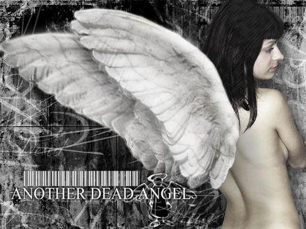 Обои Another dead angel (над надписью штрих-код и ангел с раскрытыми крыльями)