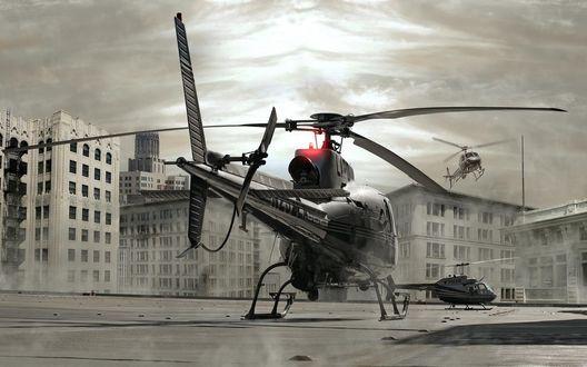 Обои Вертолеты в городе